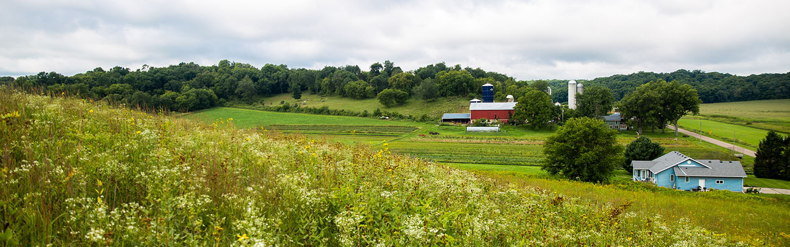A landscape with grassland in the foreground and agricultural fields and a red barn in the back ground.